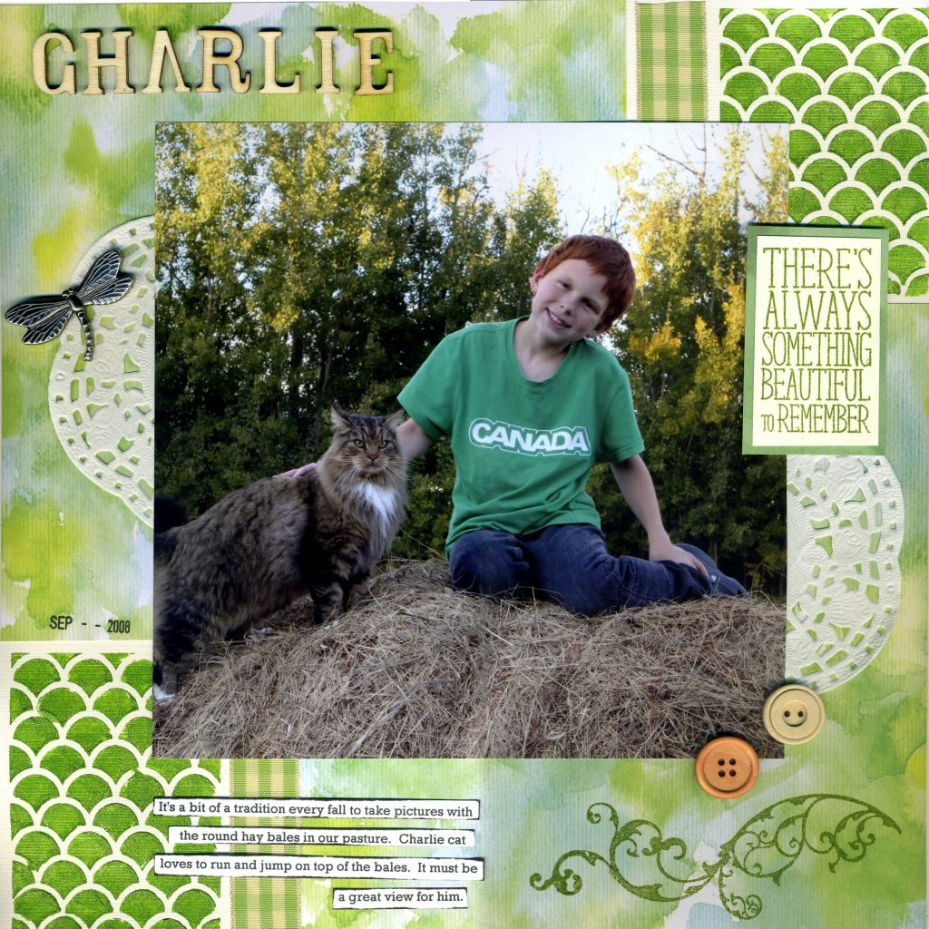 Connie Nichol, scrapbooking, scrapbooking pets, boys layouts, cat layouts, cats, stamping, creative scrapbooker magazine, csmscrapbooker, 12X12 layouts, sketches, layouts based on a sketch, 12X12 layouts based on a sketch, pets, scrapbooking pets,