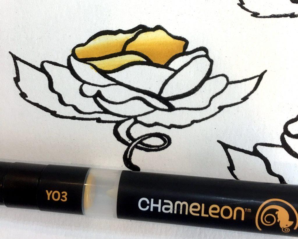 chameleon-marker-and-rose