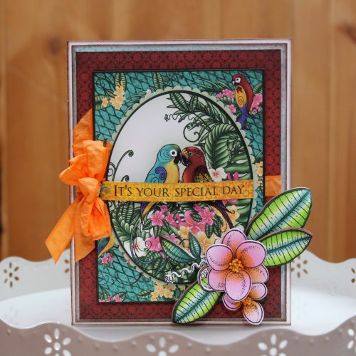 @scrappychick101 @csmscrapbooker @heartfeltcreations @chameleonpens @sbadhesives3l #tracymclennon #creativescrapbookermagazine #chameleonpens #heartfeltcreations #scrapbookadhesivesby3l #colortonepens #tropicalparadisecolleciton #cardmaking #stampingoncards #parrotpaternedpaper #adultcolouring #coloringstampedimages #birthdaycard #flowerdies #cardmaking