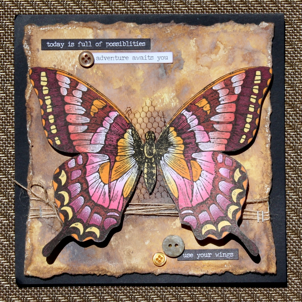 Scrapbook card featuring a huge Stampin' Up! butterfly stamp for card making coloured with Chameleon pens.