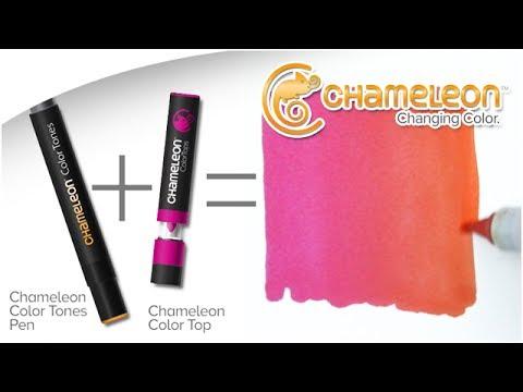 Chameleon Color Tops   Adult Coloring   Creative Scrapbooker Magazine