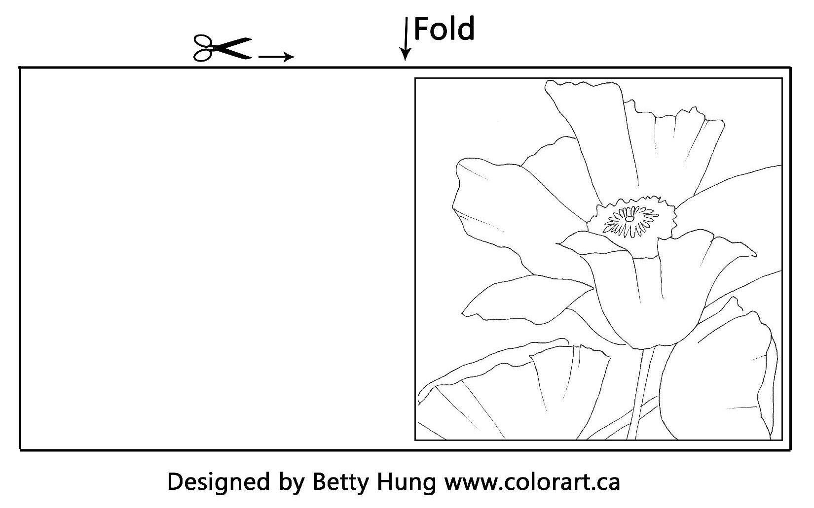 Free Poppy Illustration drawn by Betty Hung